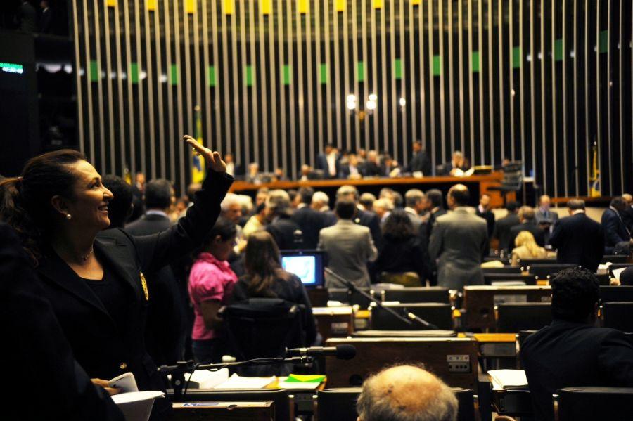 Deputados votaram Código Florestal em sessão extraordinária